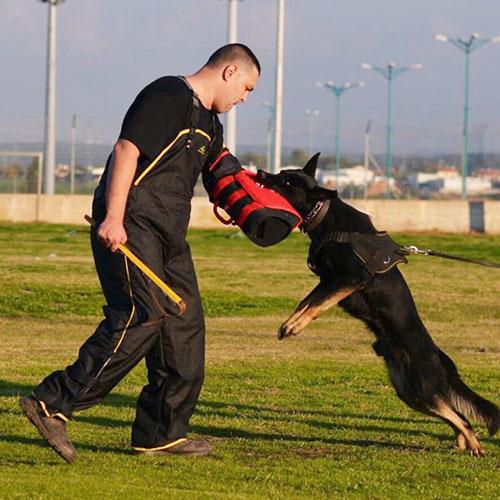 Pantalon pour maître chien «Confort & Protection» - PBS3