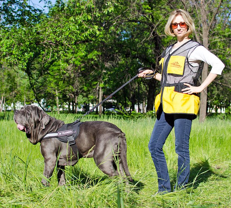 veste sans manche de dressage chien entra nement en plein air v15. Black Bedroom Furniture Sets. Home Design Ideas